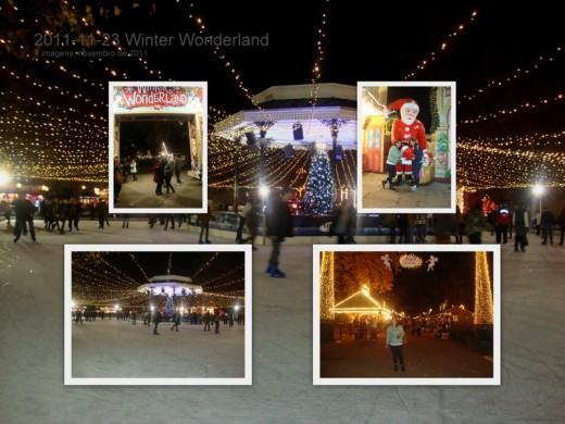 2011-11-23 Winter Wonderland