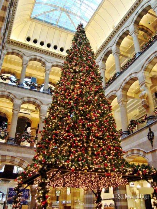 amsterdam-christmas-tree-5583-600x800